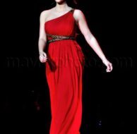 02_12_2010_Heart Truth Fashion Show_1.jpg