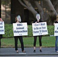 PETA NBC Protest_9_19_12_01